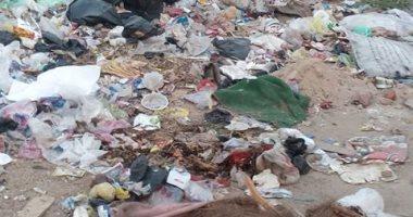 قارئ يشكو انتشار القمامة بشوارع منطى بالقليوبية
