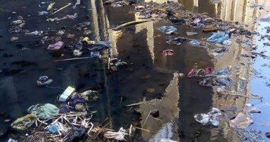 شكوى من استمرار انتشار مياه الصرف الصحى بعمارات الجمعية الزراعية بالمنيا