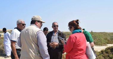 صور.. تعرف على مشروع زراعة نبات السلاكورنيا بالبحر الأحمر فى 9 معلومات