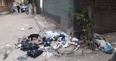 اضبط مخالفة.. أهالى شبين الكوم يشكون انتشار القمامة بجوار مدرسة عبد المنعم رياض