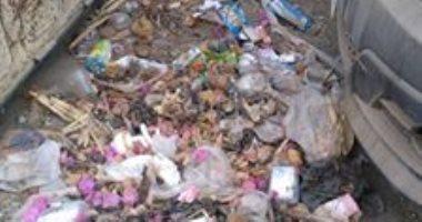 شكوى من انتشار القمامة بشارع عمرو بن العاص فى السلام