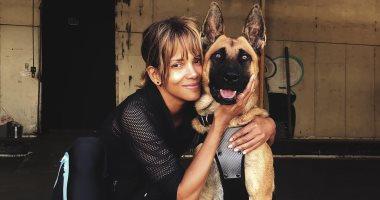 هالى بيري من كواليس تصوير الجزء الثالث لفيلم John Wick