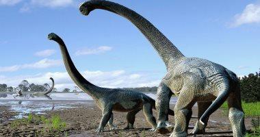 اكتشاف حفريات سلالة جديدة من الديناصورات جنوب غربى الصين