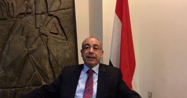 سفير مصر لدى الأمم المتحدة محمد إدريس