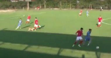 الكلب خلال عرقلته للاعب
