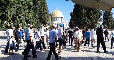 """آلاف المستوطنين الاسرائليين يقتحمون """"أم لقبا"""" و""""البرج"""" فى الأغوار الشمالية"""
