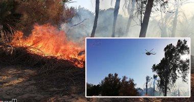 وزير الزراعة: لا خسائر بشرية وجارٍ حصر الخسائر المادية فى حريق الوادى الجديد