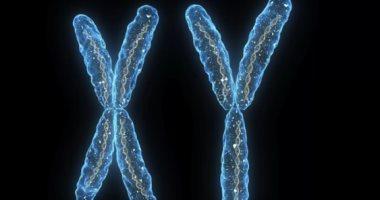 اعرف جسمك.. 6 حقائق مهمة لا تعرفها عن كروموسوماتك الحاملة للحمض النووى