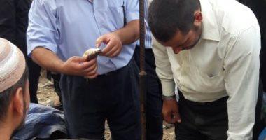 صحة الشرقية: تحرير 37 محضراً لمنشآت غذائية فى 4 مراكز