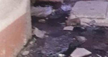 غرق مساكن الشباب بالشرقية بمياه الصرف الصحى
