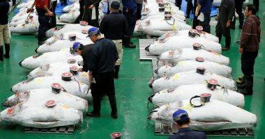 صور.. استئناف العمل فى أكبر سوق أسماك فى العالم بموقع جديد فى طوكيو