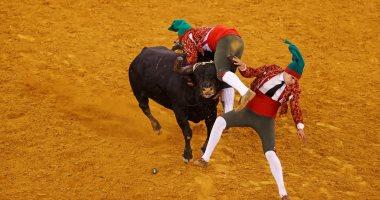 صور.. انطلاق مسابقة مصارعة الثيران فى مدينة لشبونة بالبرتغال