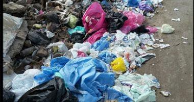 شكوى من انتشار القمامة والمخلفات الطبية خلف مصنع طنطا للزيوت