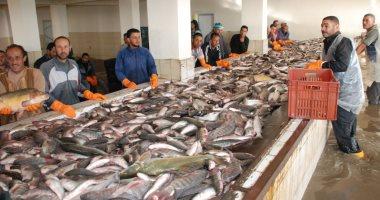 أسعار السمك اليوم الجمعة 18-1-2019