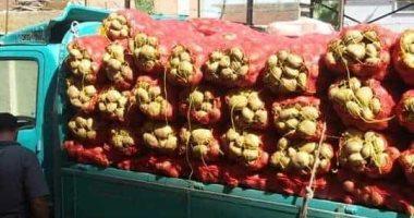 فحص 637 ألف طن بطاطس مائدة معدة للتصدير لدول الاتحاد الأوروبى