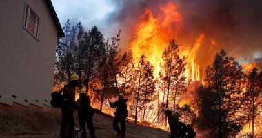 الحرائق تتجدد وتلتهم الغابات فى ولاية كاليفورنيا الأمريكية