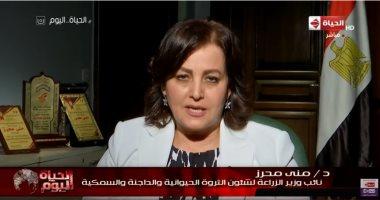 نائب وزير الزراعة: مصر الأولى إفريقيًا فى الاستزراع السمكى