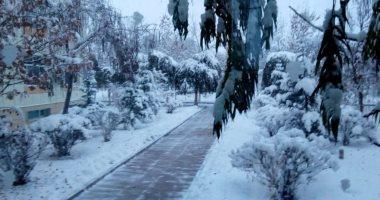 مصرع 5 أشخاص فى عواصف ممطرة وثلجية بكاليفورنيا