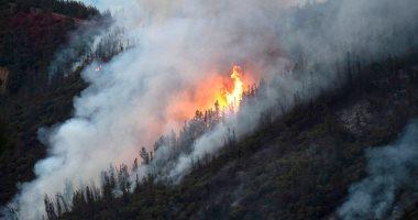 إندونيسيا: التحقيق مع 370 شركة زراعية على خلفية حرائق الغابات