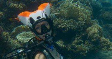 أوليجا بيلكا.. فنانة وغطاسة روسية ترسم لوحاتها تحت البحر