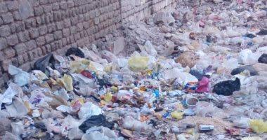 قارئ بشارع سيد درويش بأسيوط يطالب بإزالة القمامة ومكافحة الكلاب الضالة