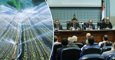 """نائب بـ""""زراعة البرلمان"""": تطوير منظومة الرى يهدف لترشيد استهلاك المياه"""