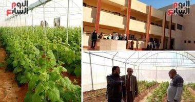 موقع إيطالى: مشروع الصوب الزراعية المحمية يوفر 75 ألف فرصة عمل