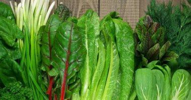 خس واتغذى.. 6 خضراوات ممكن تاكلها فى الشتاء لو عامل رجيم