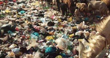 """قارئ يشكو من انتشار القمامة بمنطقة كوبرى قرية """"ميت نما"""" بالقليوبية"""