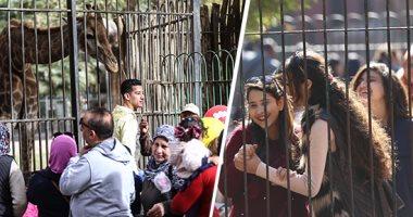 حديقة الحيوان بالجيزة: استقبال 30 ألف زائر حتى الساعة الـ10 صباحًا
