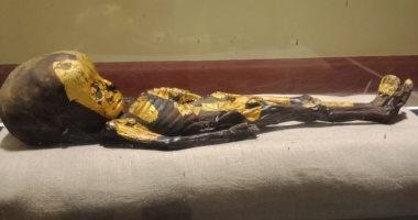 """شاهد.. جماجم وهياكل عظمية بمعرض """"إعادة اكتشاف الموتى"""" بالمتحف المصرى"""