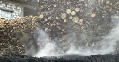 رئيس مدينة السنطة: تغريم أصحاب مكامير الفحم المخالفة من 1000 إلى 20 ألف جنيه