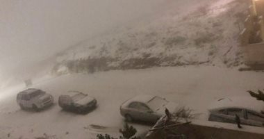 الثلوج فى الأردن