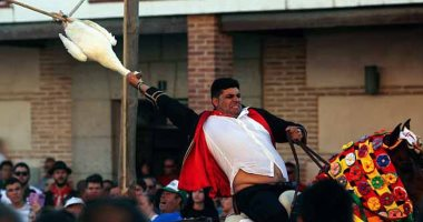 مهرجان سحب رأس الإوزة