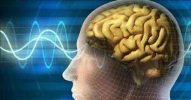اعرف جسمك.. الذاكرة طويلة المدى نظام تخرين وحفظ المعلومات بشكل دائم