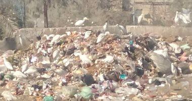 شكوى من انتشار القمامة بالشارع الجديد فى مدينة السلام