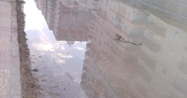 قارئ يشكو طفح مياه الصرف الصحى فى شارع المستشارين بالإسكندرية