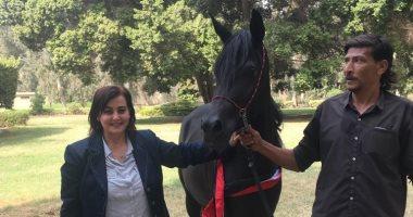 نائب  وزير الزراعة: ملف الخيول سيجد اهتمام كبير خلال عام 2019