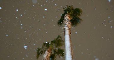 صور.. تساقط كثيف للثلوج على الولايات المتحدة الأمريكية
