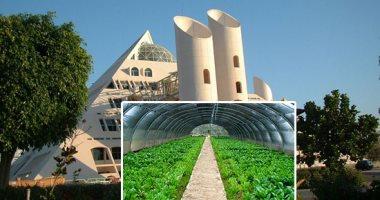 """صور.. مدينة الأبحاث العلمية صرح للأفكار التطبيقية بالإسكندرية.. محاولات لاستخدام نبات """"كينوا"""" كبديل للقمح وزراعته فى الأراضى القاحلة.. واستخدام نبات """"الجاتروفا"""" كمصدر للطاقة.. وإنجاز 60 مشروعا أخرى بحلول 2022"""