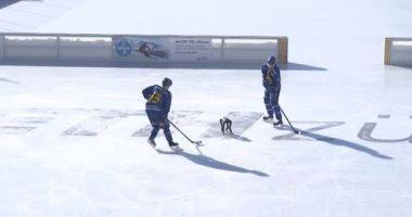باحثون سويسريون يدربون روبوت على التزحلق على الجليد.. فيديو