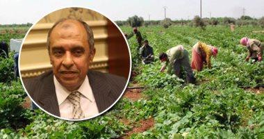 7 خطوات ضمن خطة الدولة لتطوير قطاع الزراعة فى مصر.. تعرف عليها