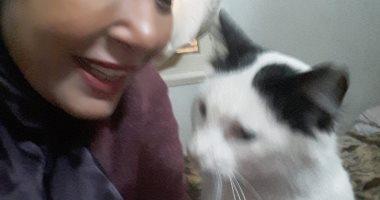 أنا وأليفى.. أمل ترسل صورتها مع قطتها: ربيتها فى البيت عندى