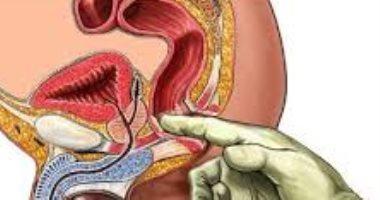 الغرور حالة عصر النهضة علاج التهاب منطقة العجان عند الرجال Comertinsaat Com