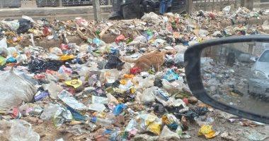 شكوى من انتشار القمامة والكلاب الضالة بمطلع كوبرى مؤسسة الزكاة الجديد