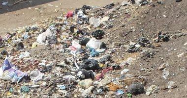 شكوي من انتشار القمامة والأوبئة بقرية الحصافه بالقليوبية