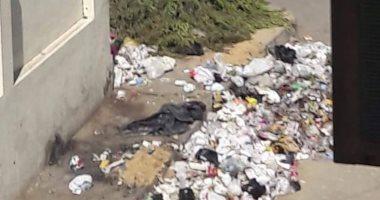شكوى من انتشار القمامة والأوبئة والكلاب الضالة بشارع الخليفة بالجيزة