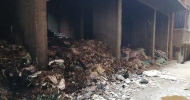 شكوى من تراكم القمامة والكلاب الضالة بشارع عزت حجازى ببئر أم سلطان