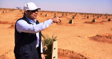 صور.. الرئيس السيسى يتفقد عدداً من المشروعات التنموية بمنطقة توشكى
