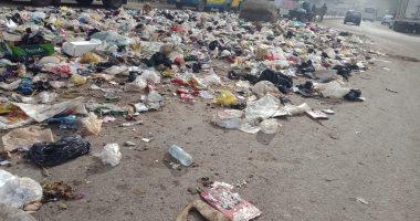قارئ يشكو من انتشار القمامة والأوبئة فى قرية أنشاص البصل بالشرقية